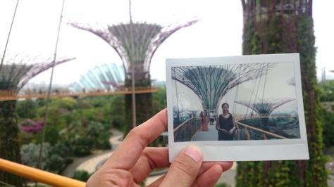 flower-dome-instax
