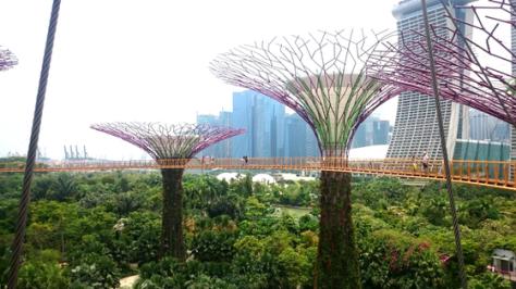 flower-dome-walkway